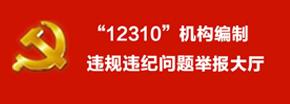 """全国机构编制""""12310""""互联网举报受理大厅"""